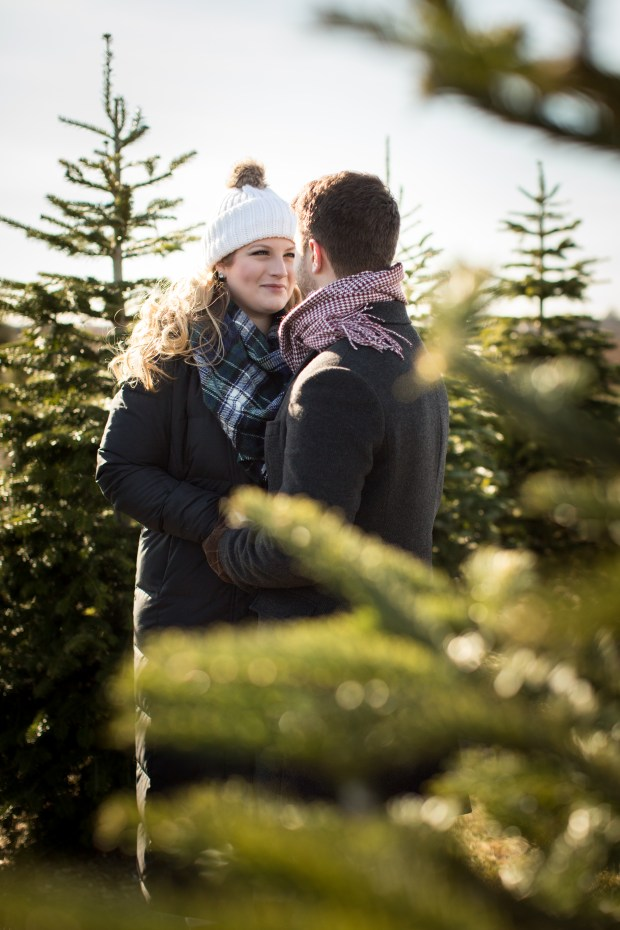 Dan and Joanna's Christmas Tree Farm Engagement Pictures