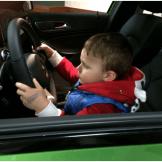 dayton auto show driving
