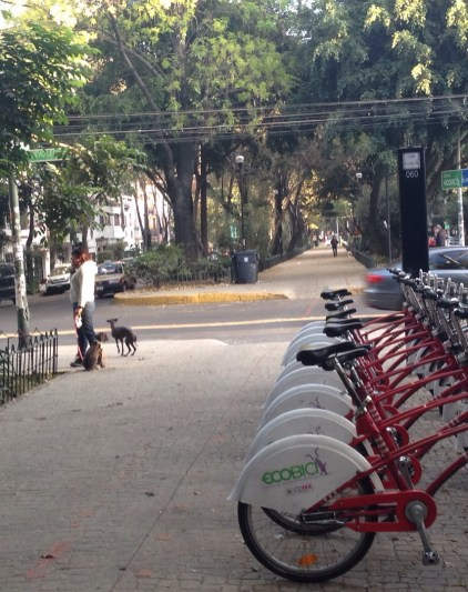 Bike sharing in Mexico City. (Courtesy of Dina Weinstein)