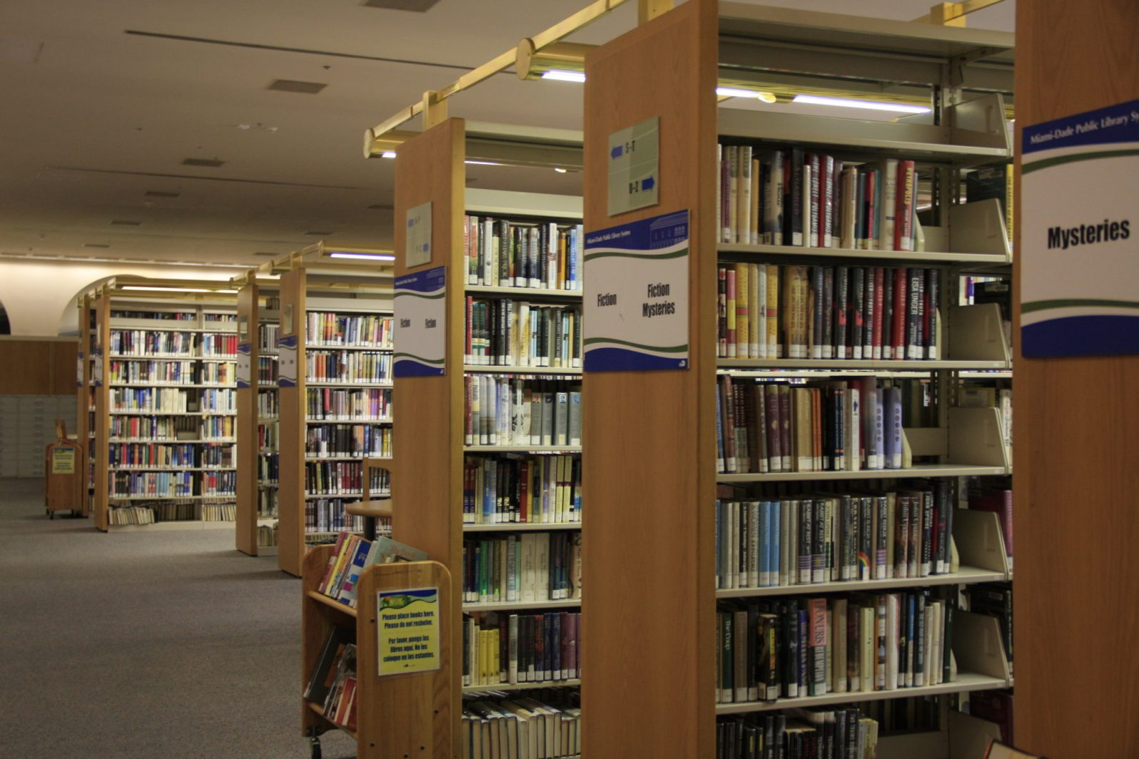 Books in the fiction section.