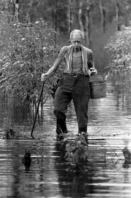 McDonald Johnson lived along the Loop Road in the Big Cypress Swamp in 1973. The exhibit and his photo shows one of the last gladesmen and proves they existed. (Credit Tim Chapman, Courtesy History Miami)
