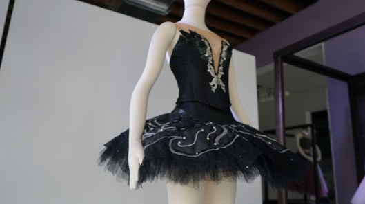 The Black Swan costume in Swan Lake. (Credit: Roshan Nebhrajani/The New Tropic)
