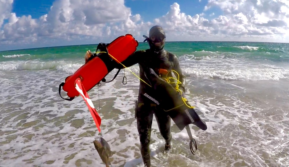 "Ferreira's friend Spencer Ash coming in from a ""beach dive"" off Miami Beach with his catch. (Photo courtesy of Roy Ferreira)"