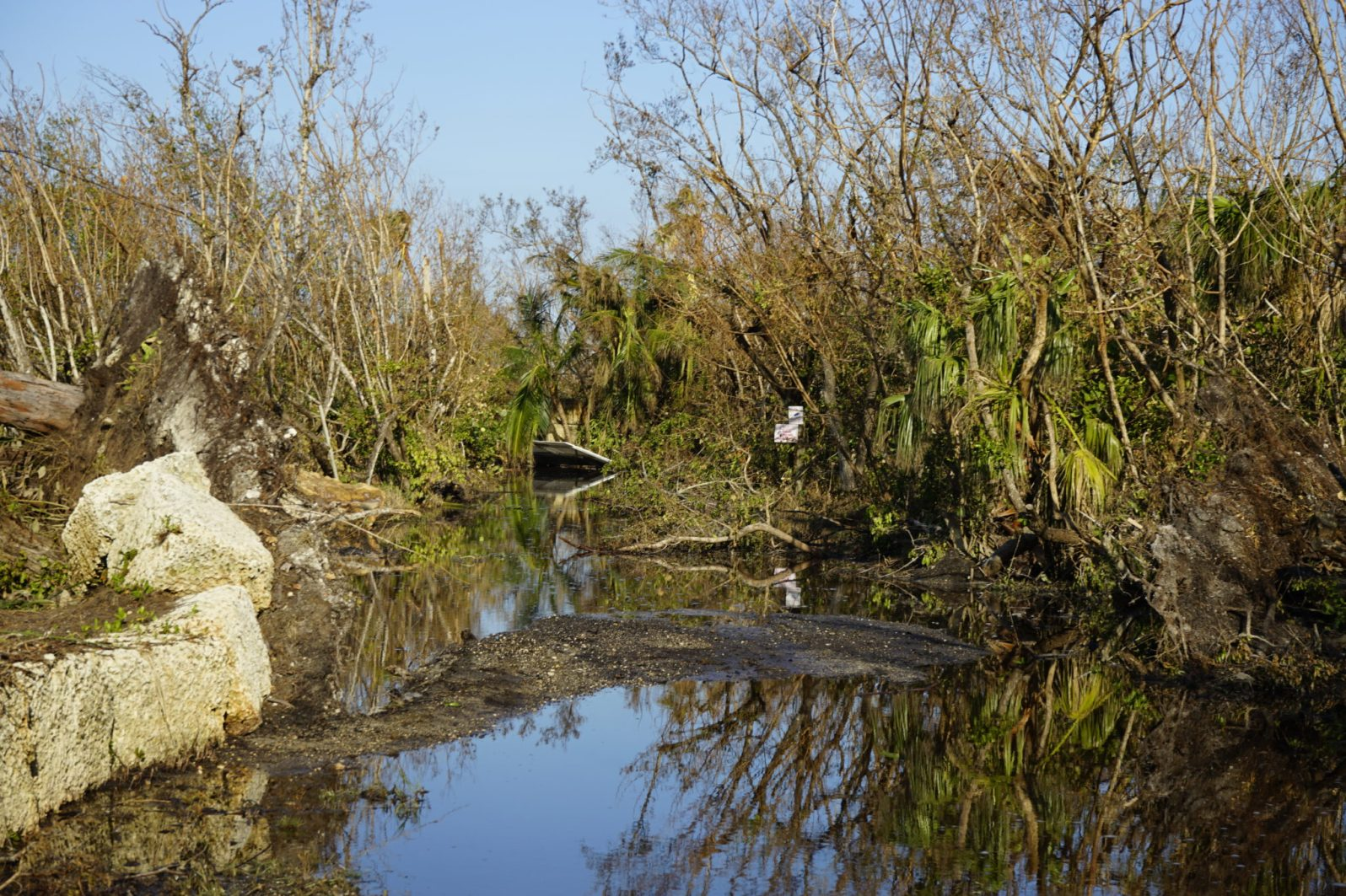 Many streets in Big Pine Key now resemble swamps.