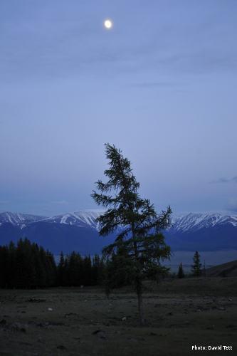 Moon rising over Kurai village, Russia (Photo: David Tett)