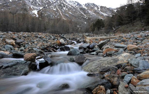 Stream in the Russian Altai (Photo: David Tett)