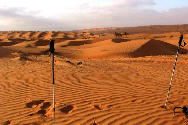 Trekking poles and camels in the Wahiba Sands