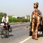 Cycling in India - Bike vs Camel