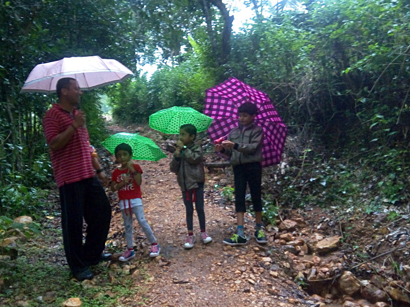 Walking in the Western Ghats
