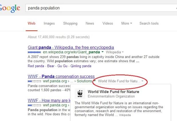 google-search-knowledge-graph-more-info