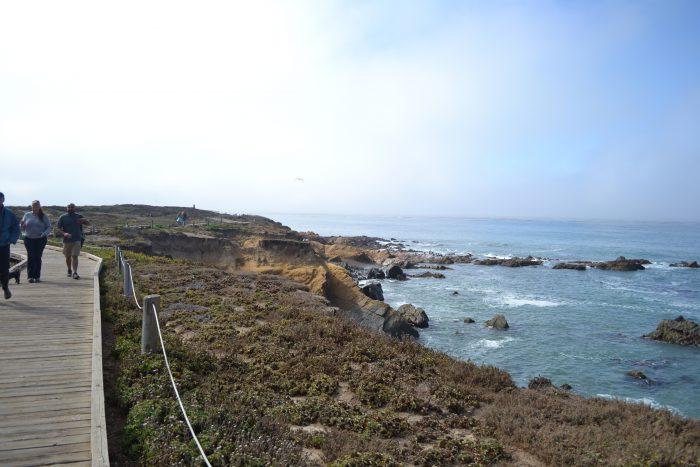 Playas que ver en Higway 1