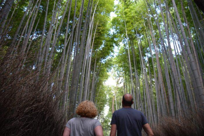 Cómo visitar Arashiyama