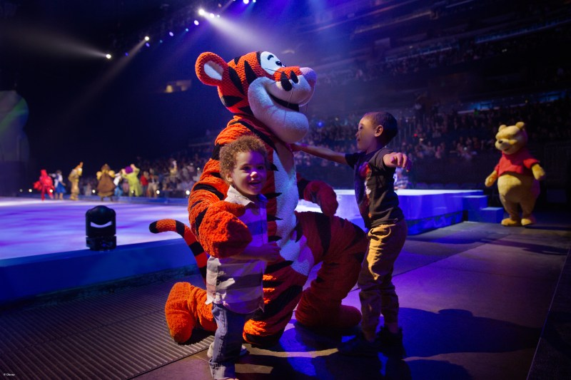 DOI - Dare to Dream - tigger - landscape.jpg