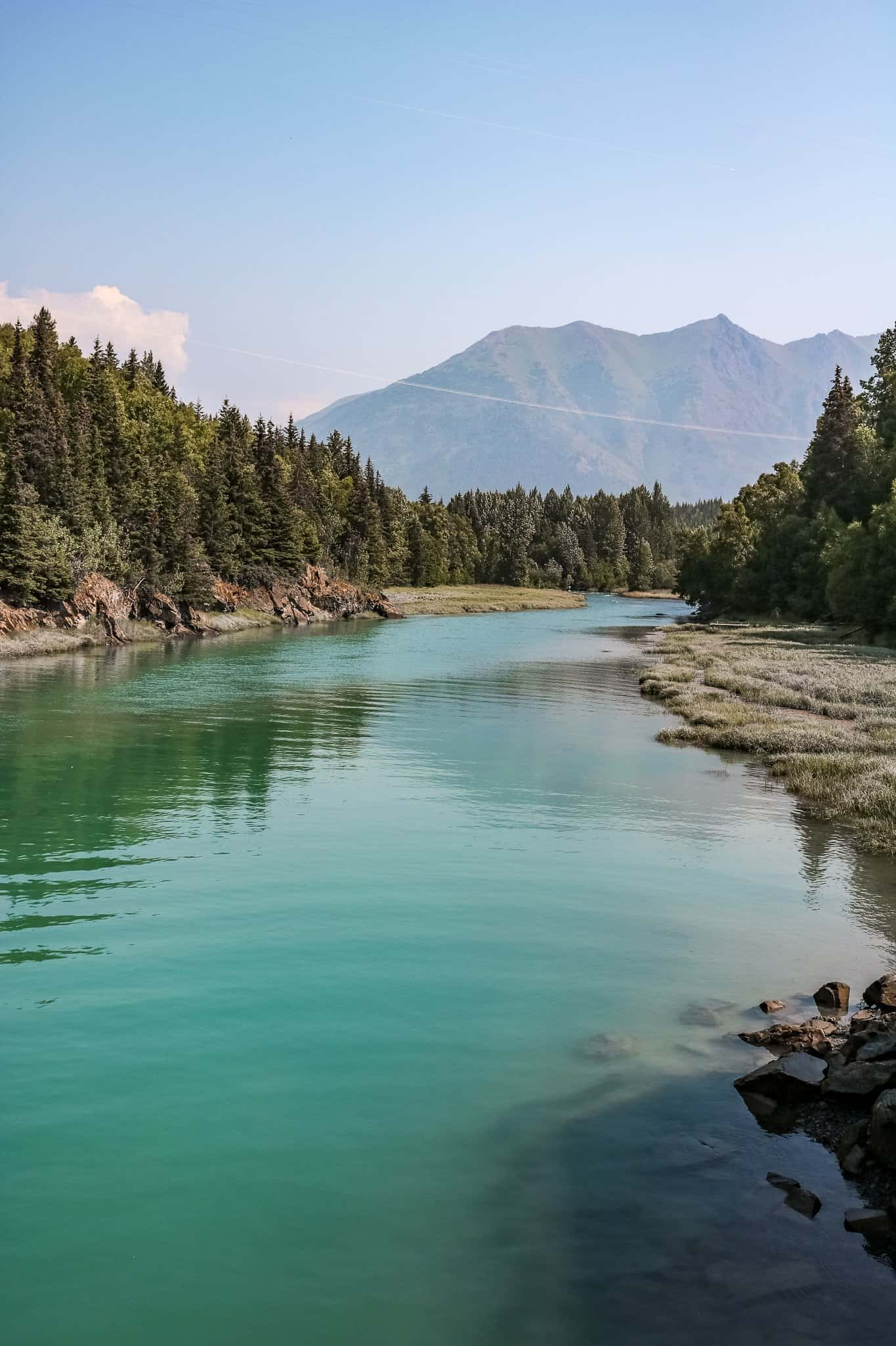River in the Summer at Kenai Peninsula - The Next Trip