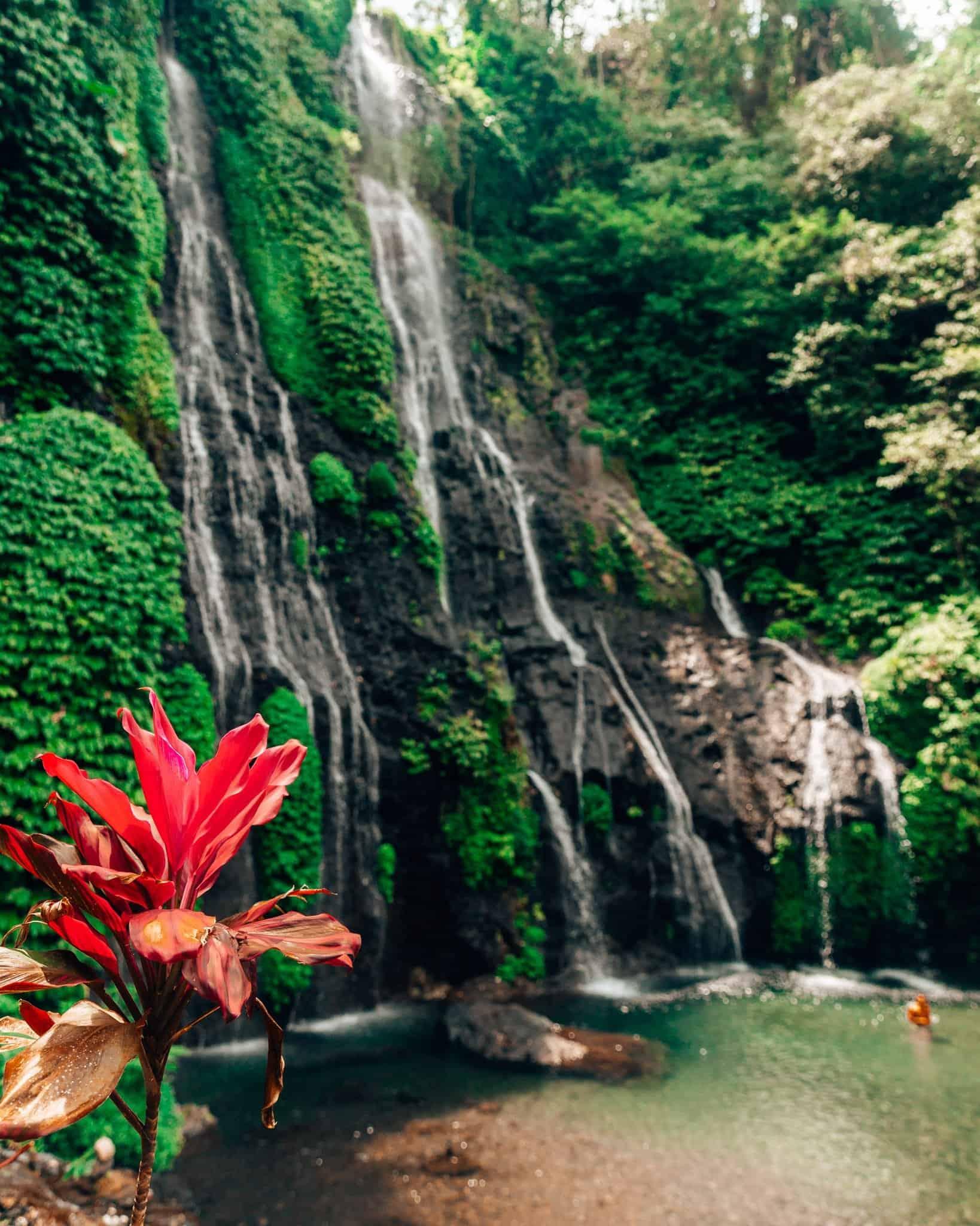 Banyumala Twin Waterfalls Bali - The Next Trip