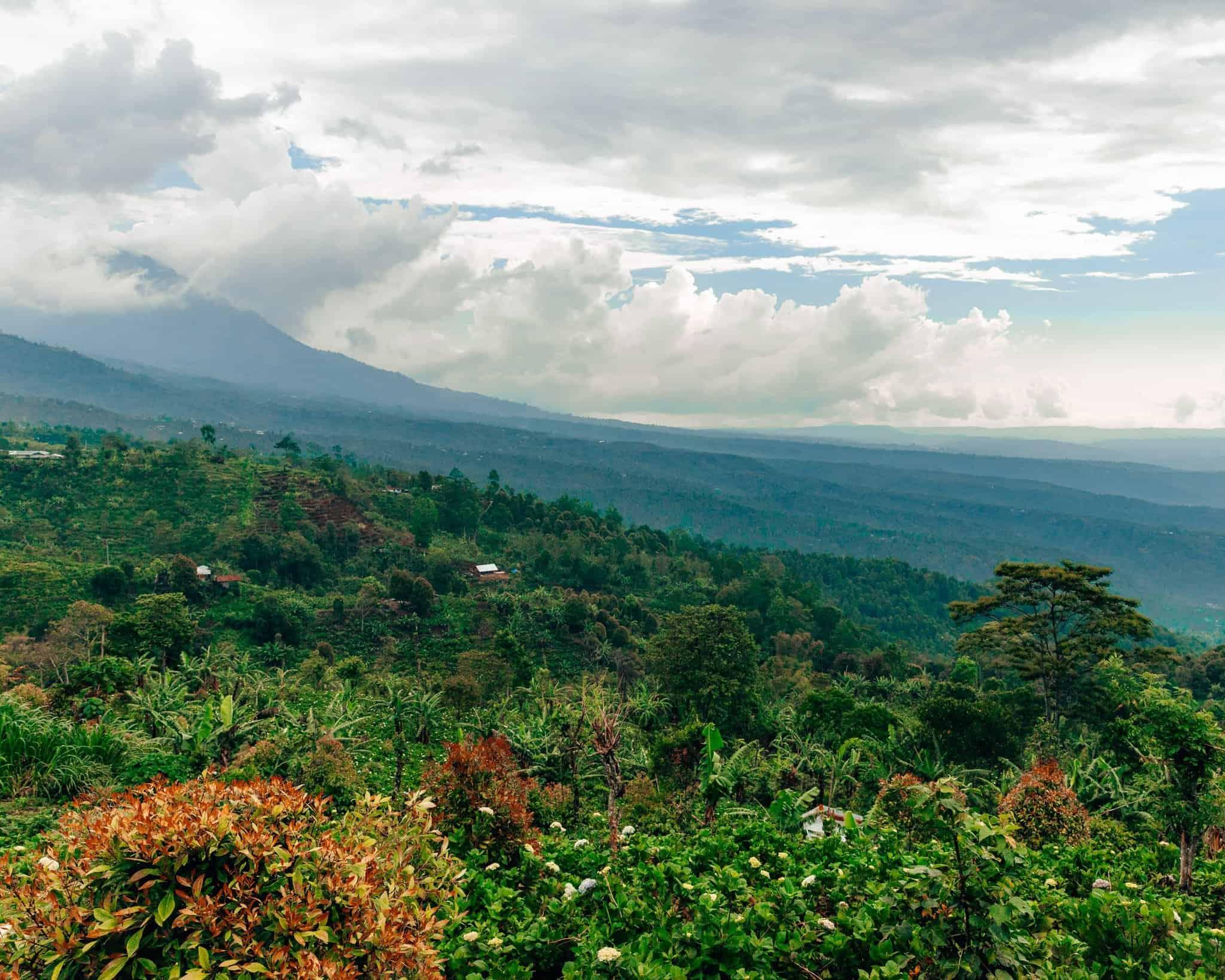 View of Munduk Bali - The Next Trip