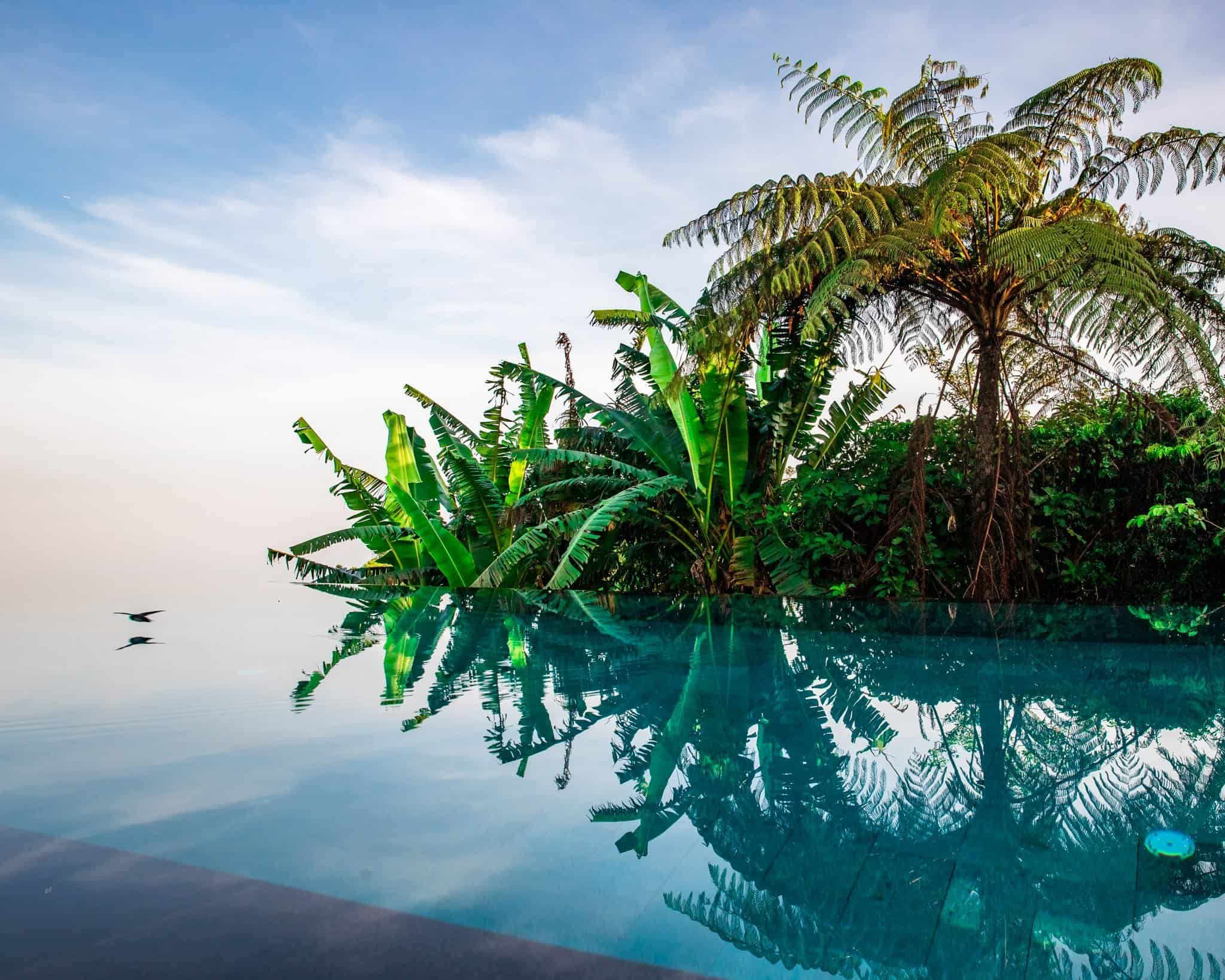 Pool View at Munduk Moding Plantation Bali - The Next Trip