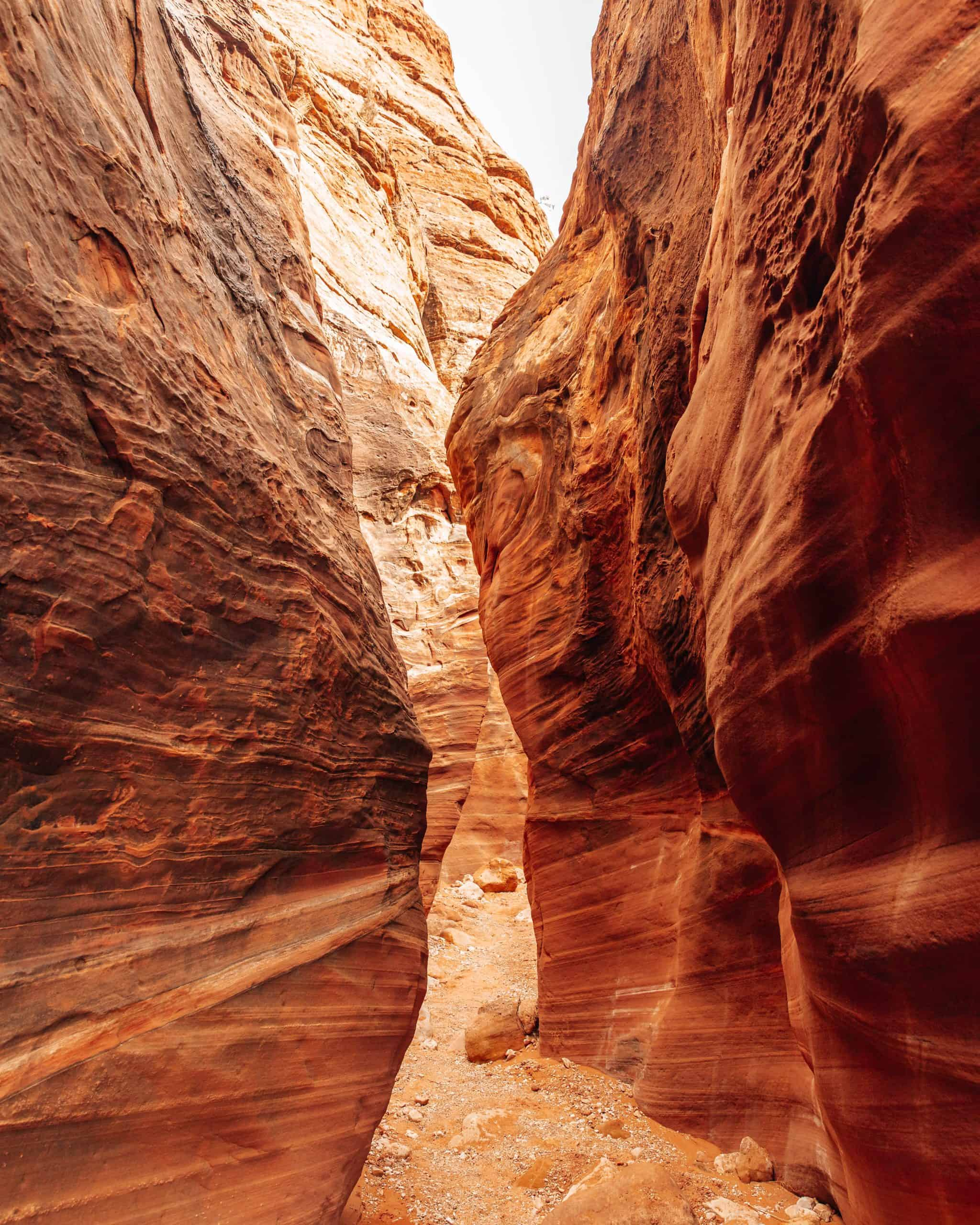 Wire Pass and Buckskin Gulch Slot Canyon - The Next Trip