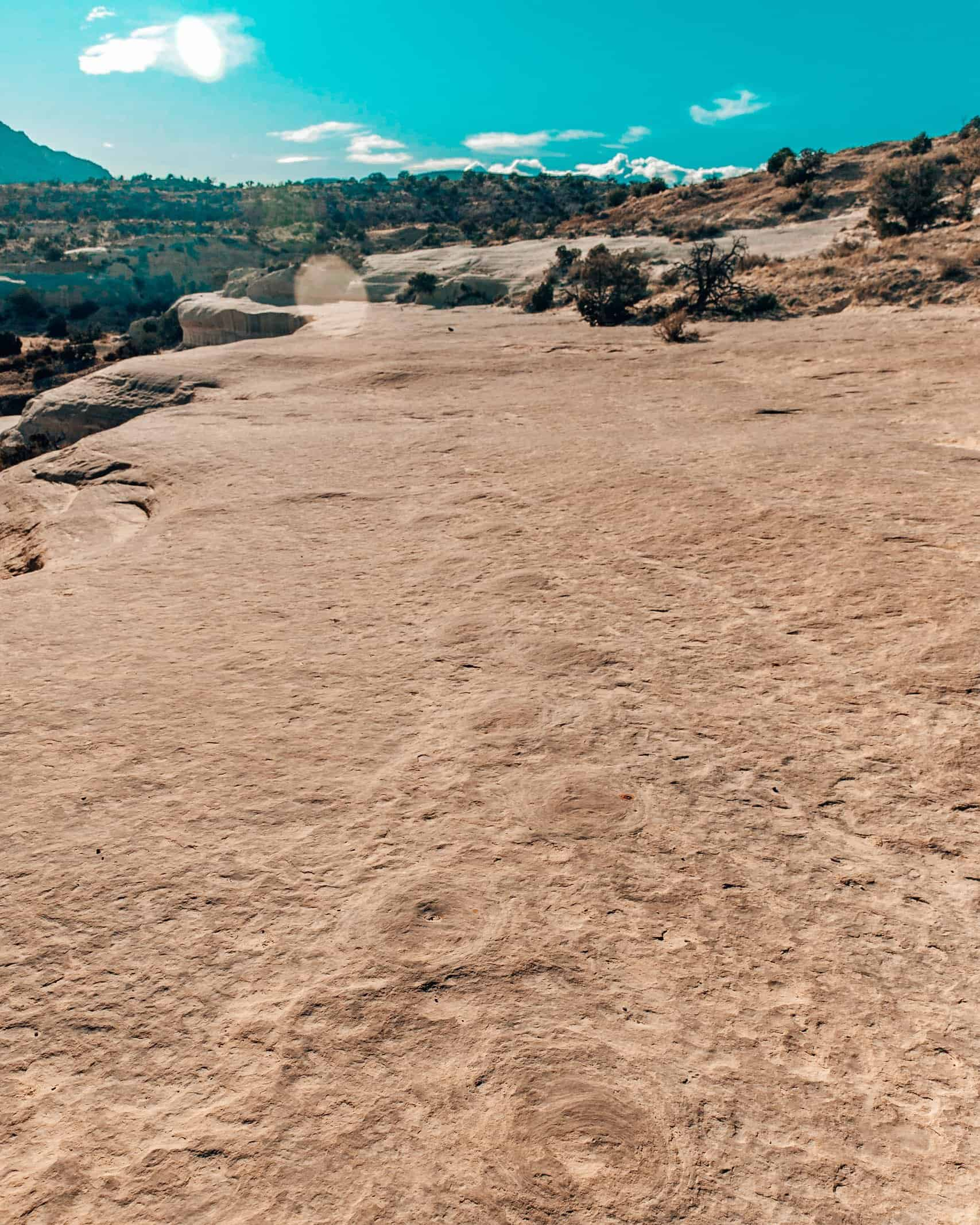 20 Mile Dinosaur Tracks in Escalante Staircase Utah