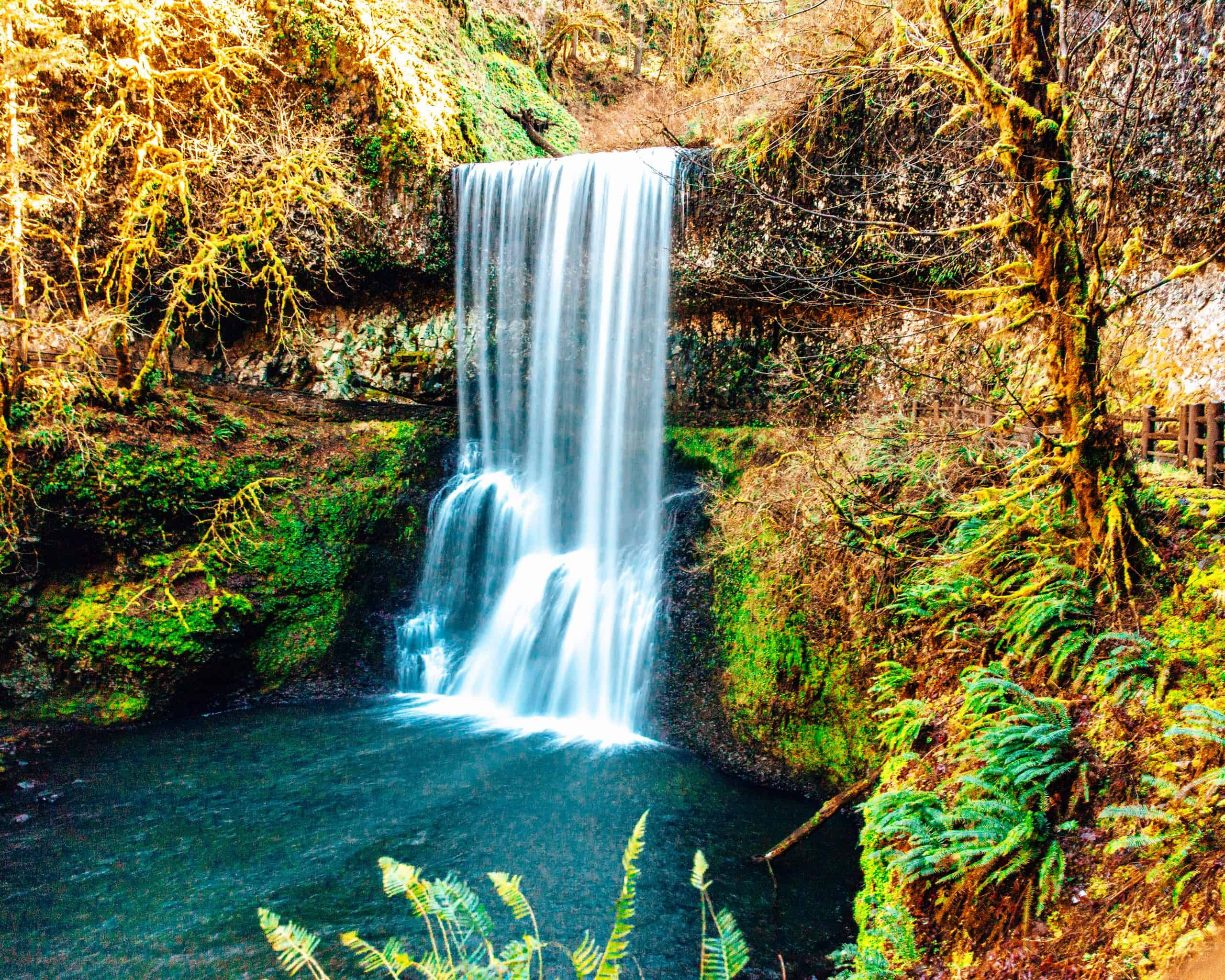 Oregon Waterfall in Silver Falls State Park