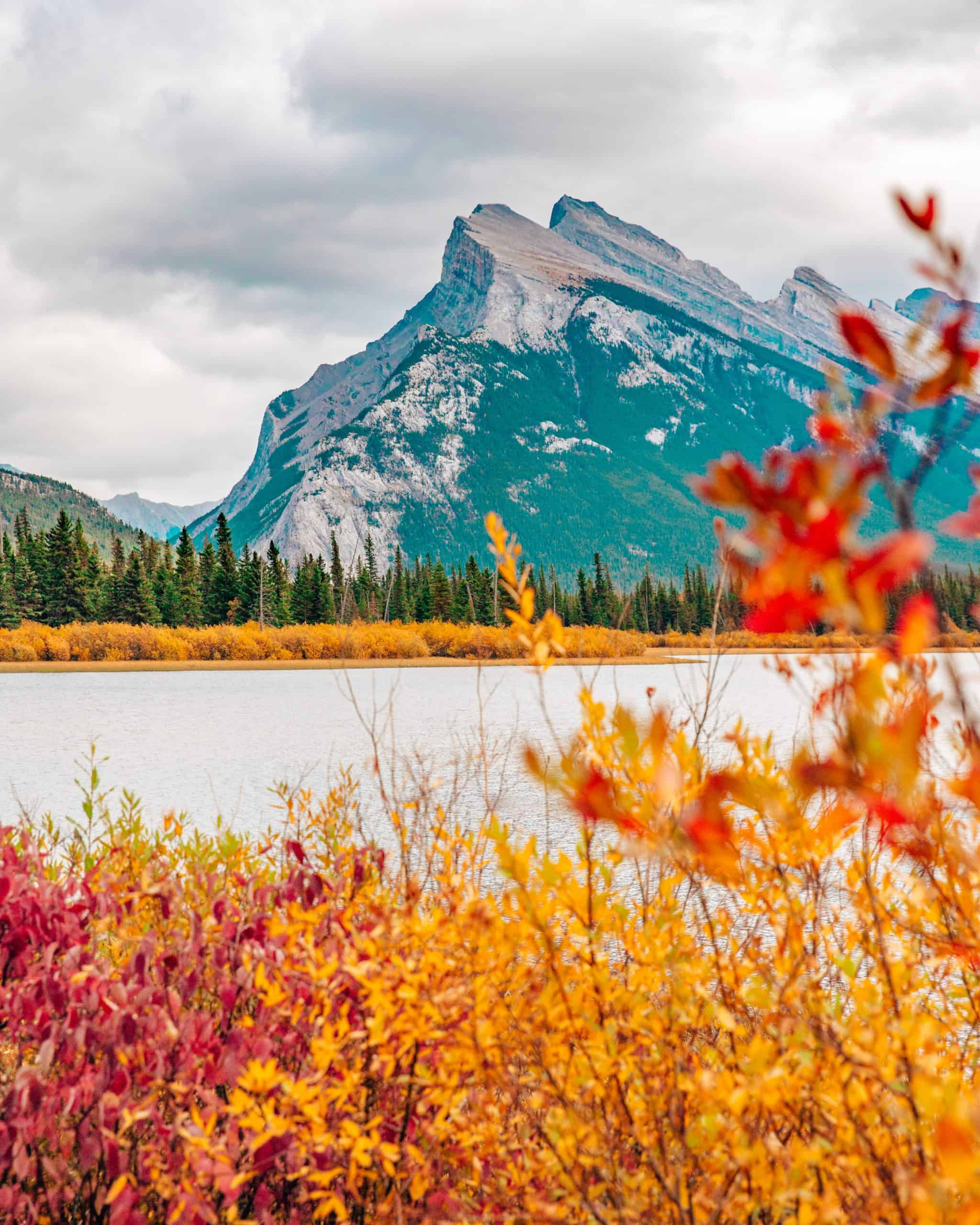 Fall Foliage at Vermillion Lakes with View of Mount Rundle