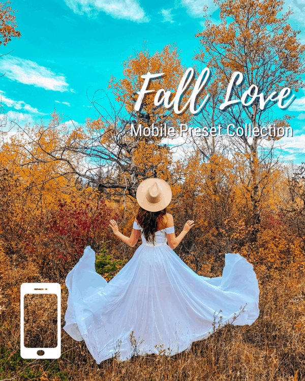 Fall Mobile Preset Collection The Next Trip