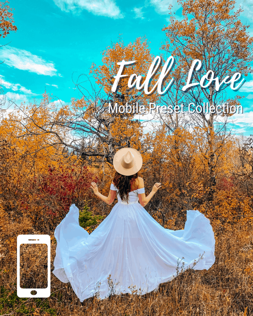 Mobile Lightroom Presets - Fall Love Collection