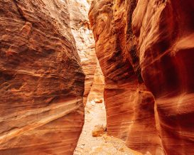 Wire Pass - Best Slot Canyon in Utah