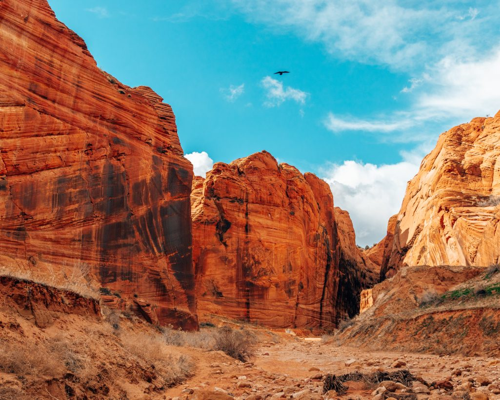 Buckskin Gulch Utah