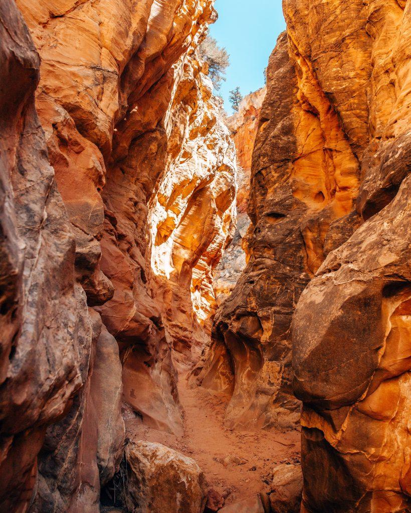 Cottonwood Canyon Utah