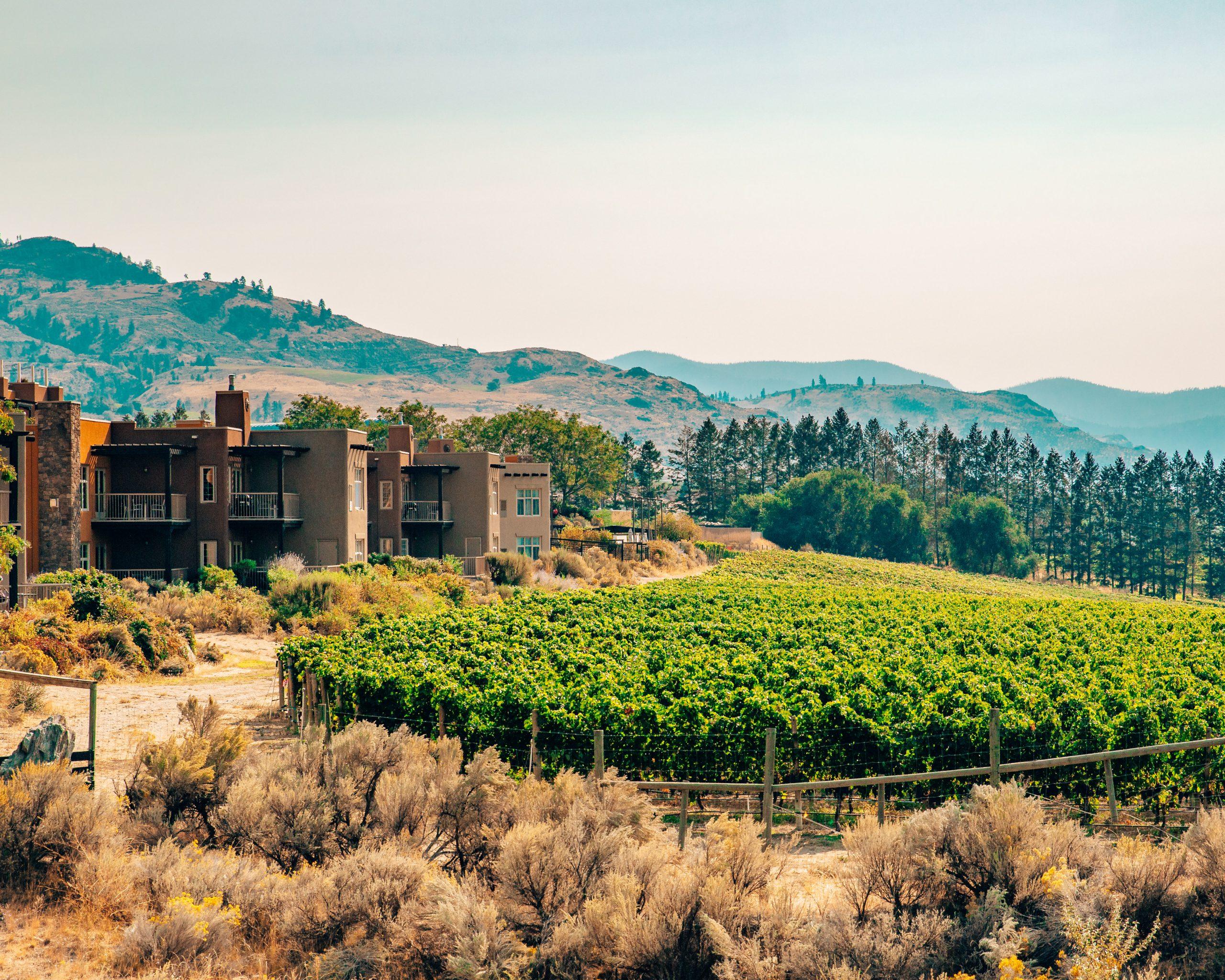 Nk'Mip Cellars Wine Tasting British Columbia