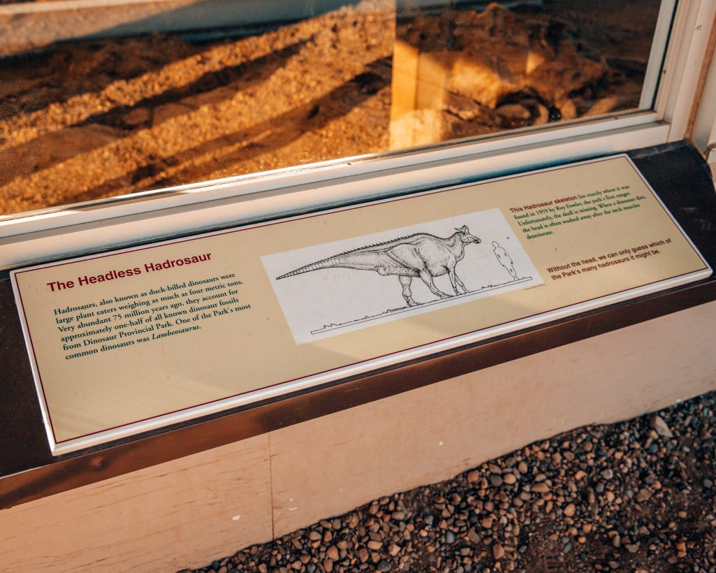 Headless Hadrosaur Fossil Sign at Dinosaur Provincial Park Alberta