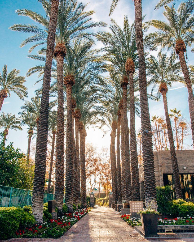 Hyatt Regency Scottsdale 3