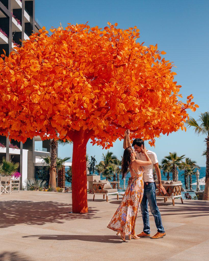 Signature Orange Tree at Garza Blanca Los Cabos