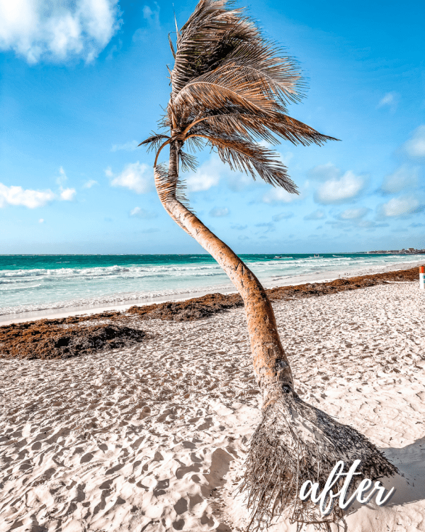 Tulum Mobile Preset Collection 6
