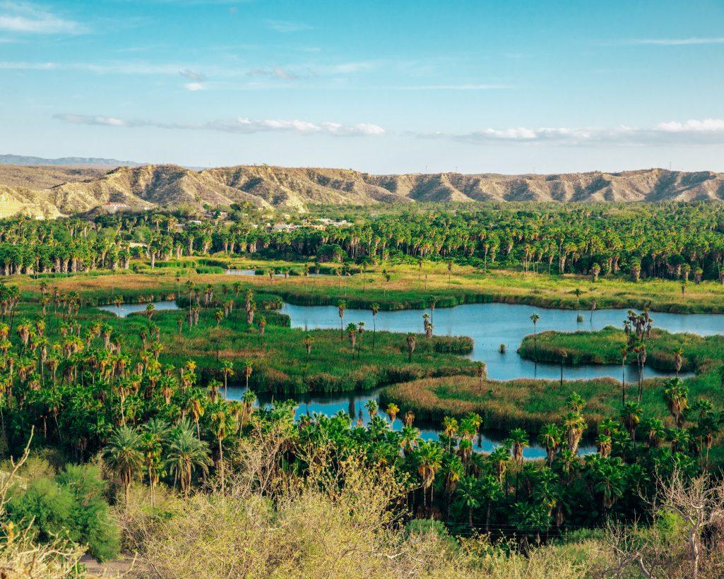 River Near Santiago, Baja California