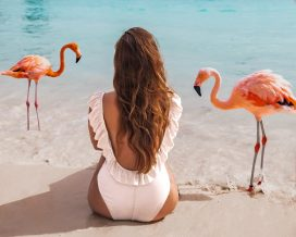 Flamingo Beach Aruba: The Complete Guide 7