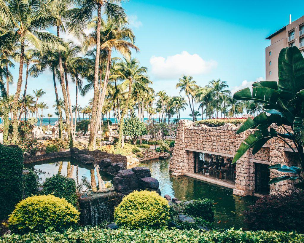 Hyatt Regency Aruba Resort Area