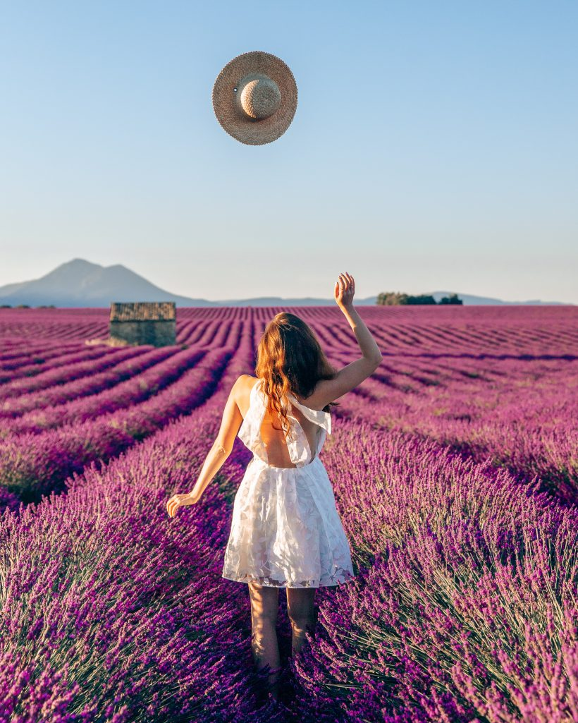 Throwing Hat in the Air at Lavender Fields Provence