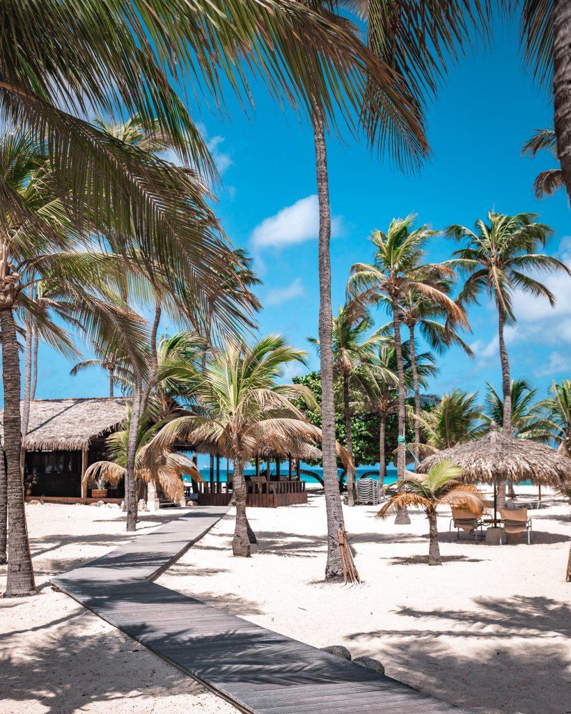 Manchebo Beach Resort Aruba Walkway