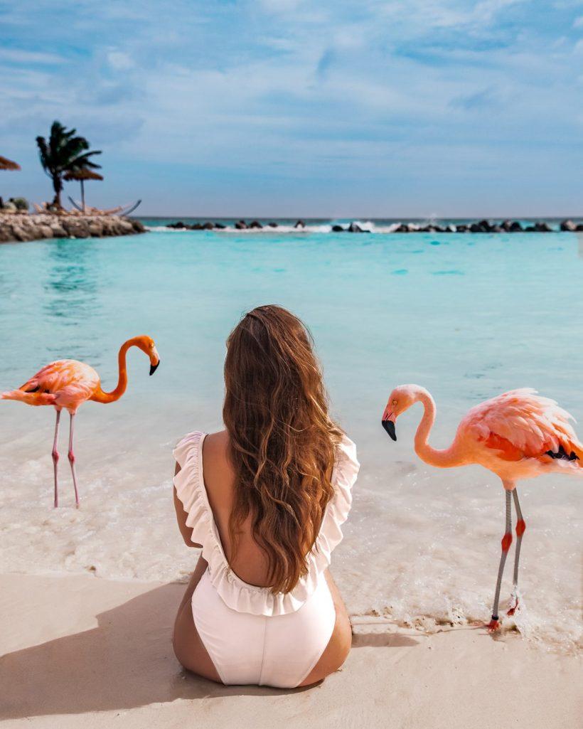 Sitting among Flamingos on Flamingo Island