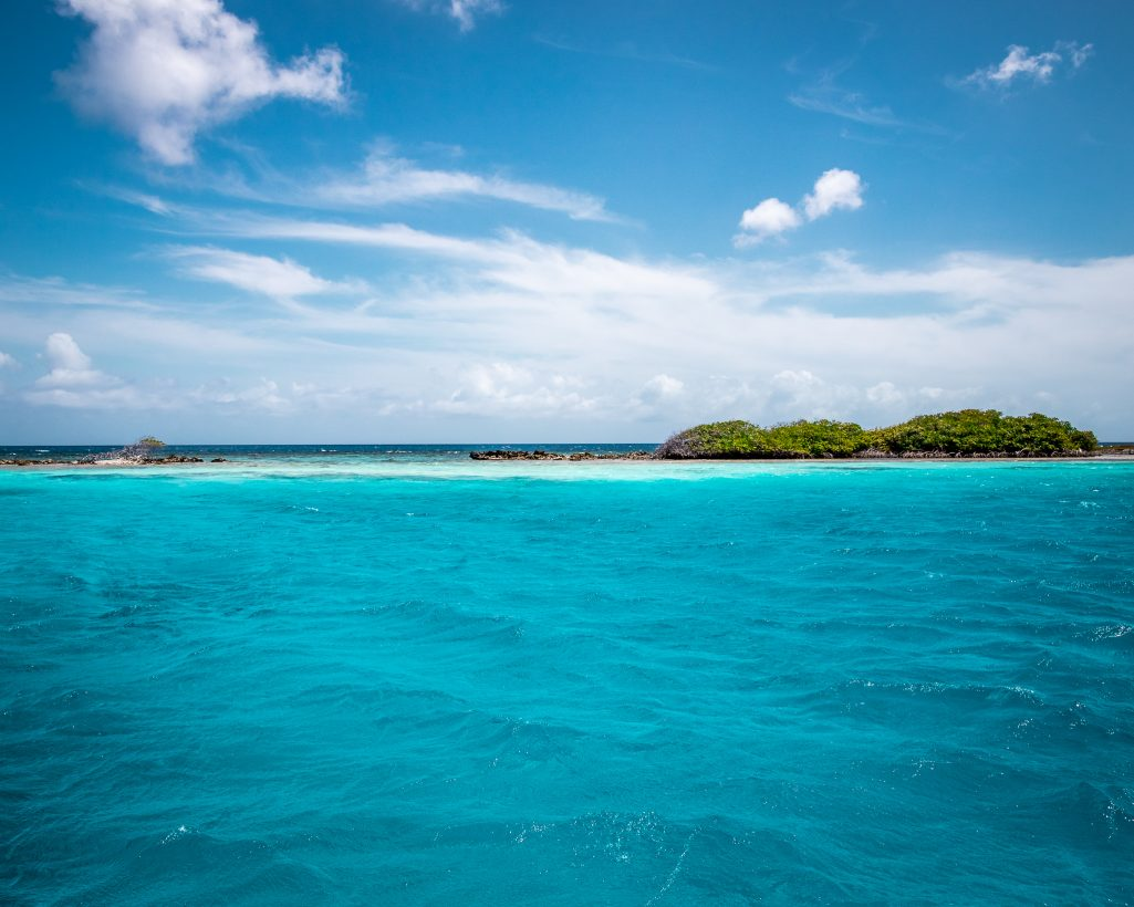 Mango Halto Beach Aruba Blue Water