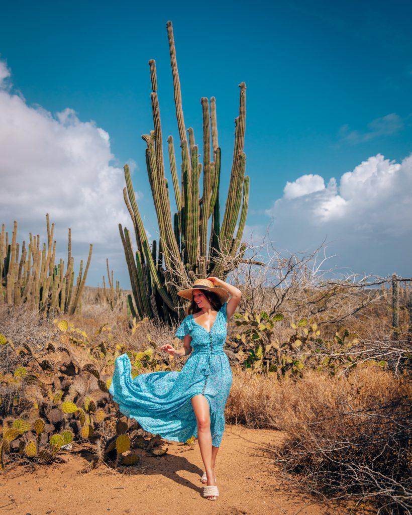 Arikok Cactus Aruba