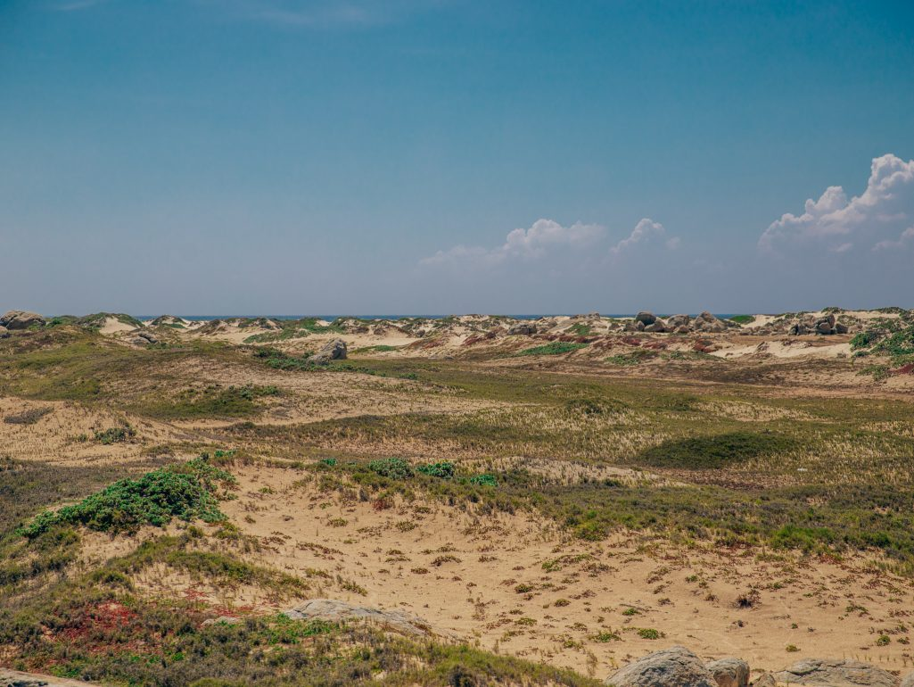 California Dunes Aruba