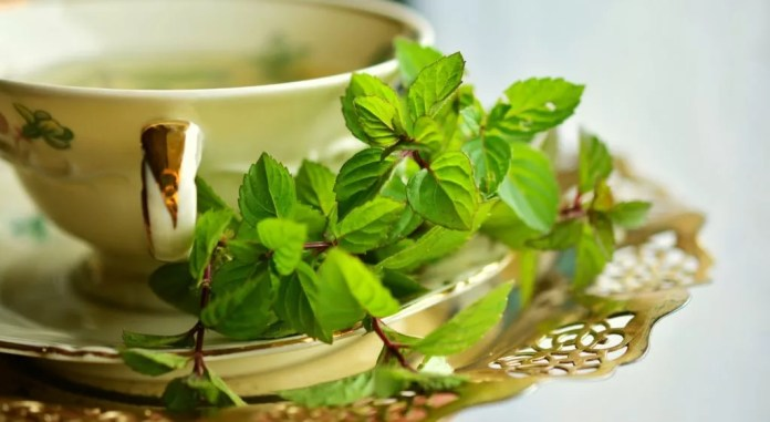a cup of peppermint tea to relieve pain