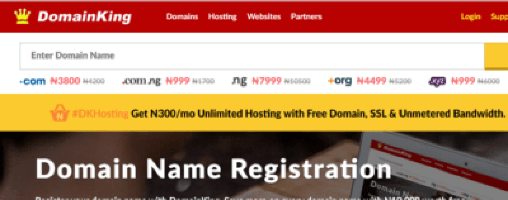 domain king best web hosting companies in nigeria