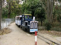 Toy Train At Gulab Bagh and Zoo Udaipur