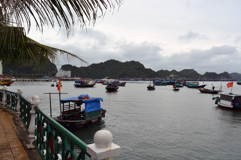 Cat Ba town's port