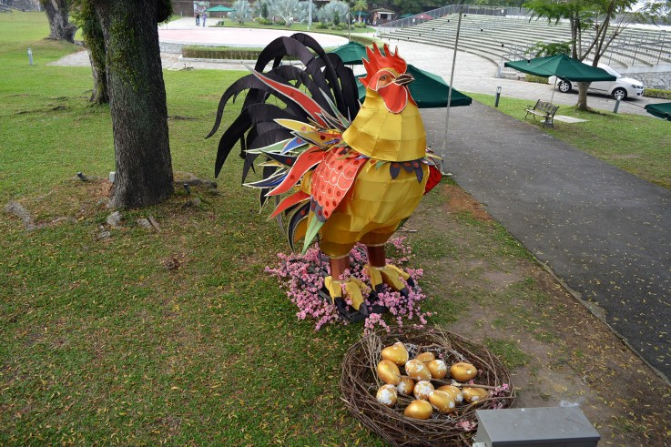 Random rooster. With eggs hmm.