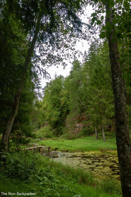 The Cirulisi Nature Trail